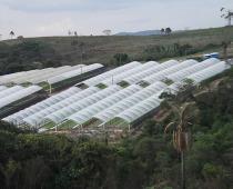 Estufas agrícolas Hidrogood