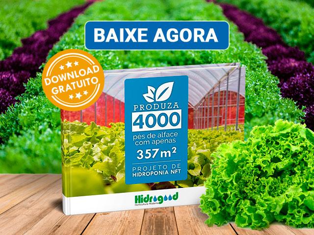 E-book Projeto de Hidroponia
