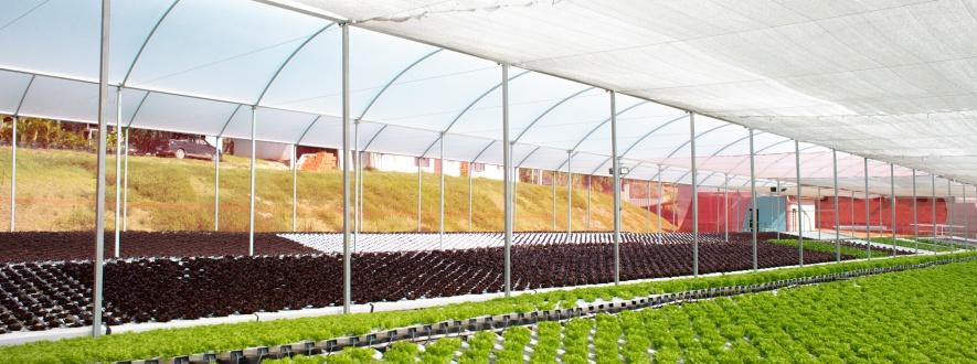 planejamento financeiro agronegocio